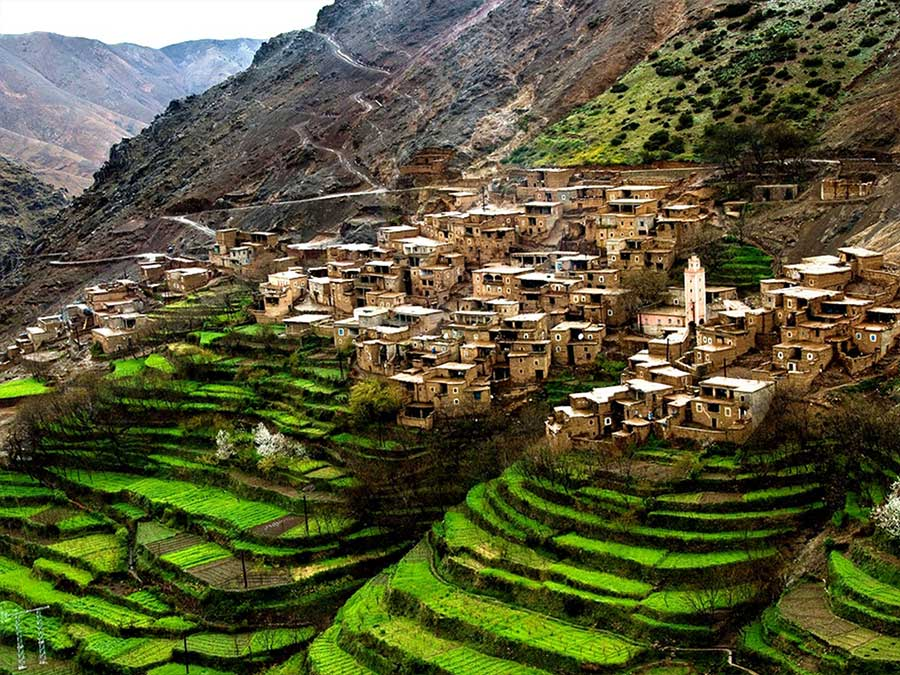 Marrakech to Atlas Mountains excursion