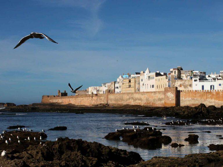 Marrakech to Essaouira day trip