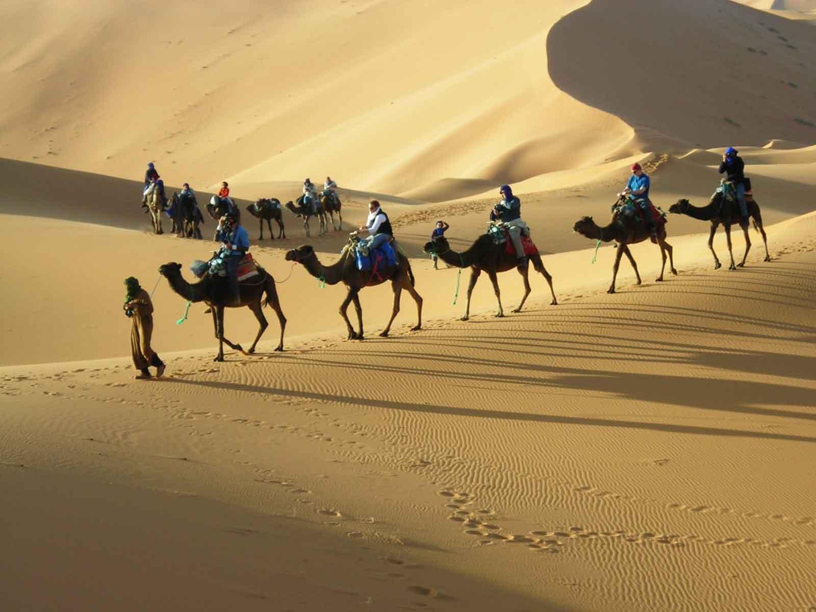 Fes to Marrakech desert tour