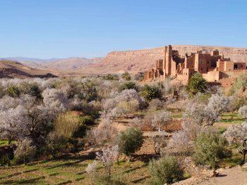 Marrakech day trip to ouarzazate