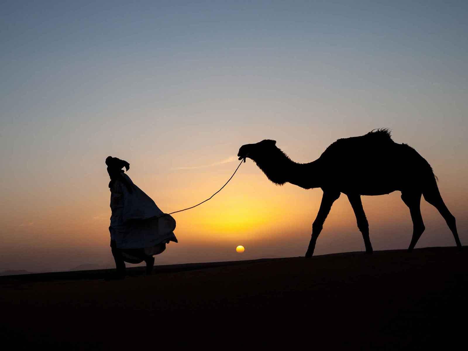 Marrakech excursion desert trip to erg chigaga