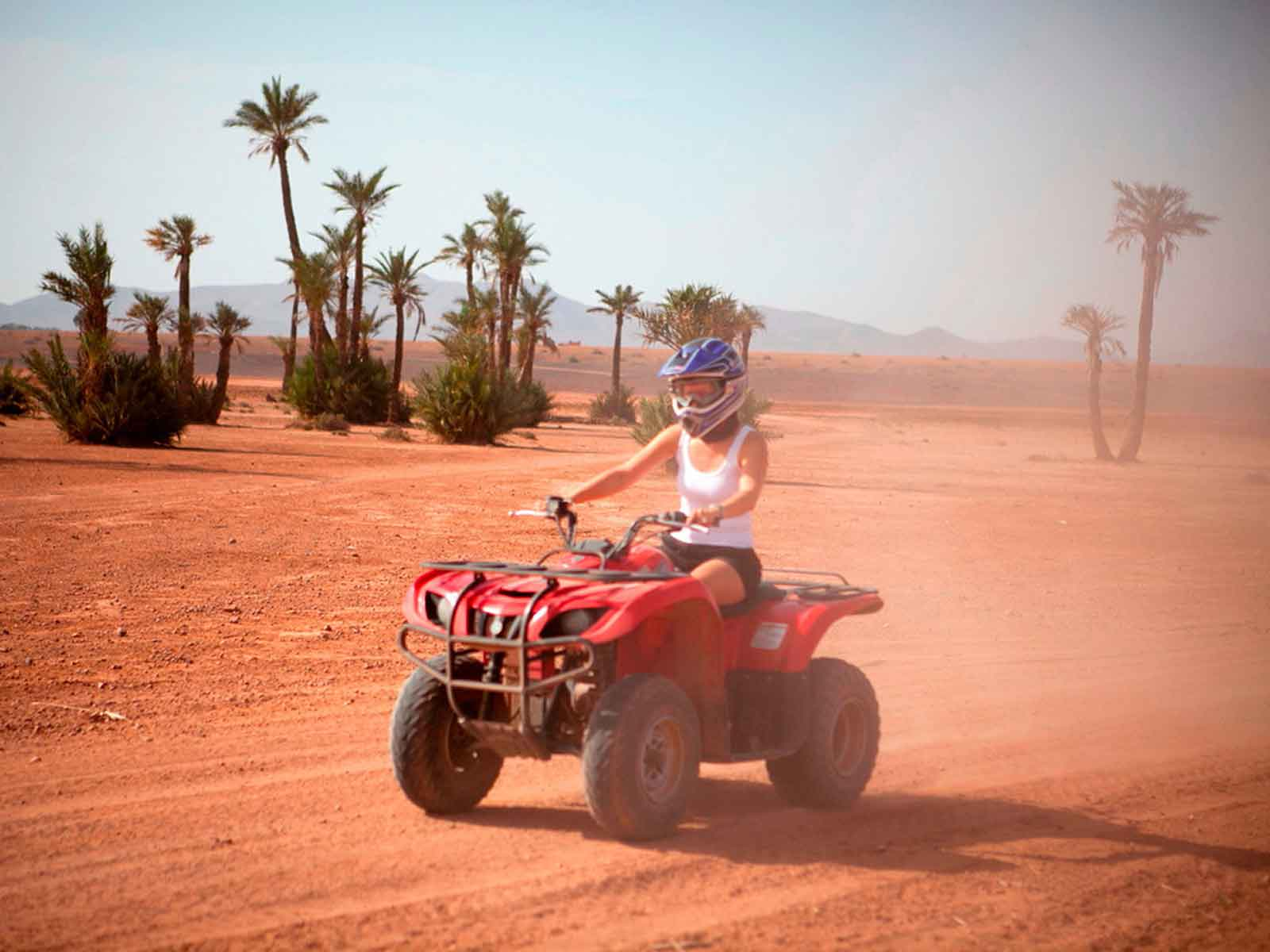 Marrakech quad bike tour in the palmeraie