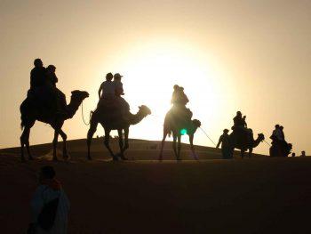 Marrakech to Zagora 2-day desert tour