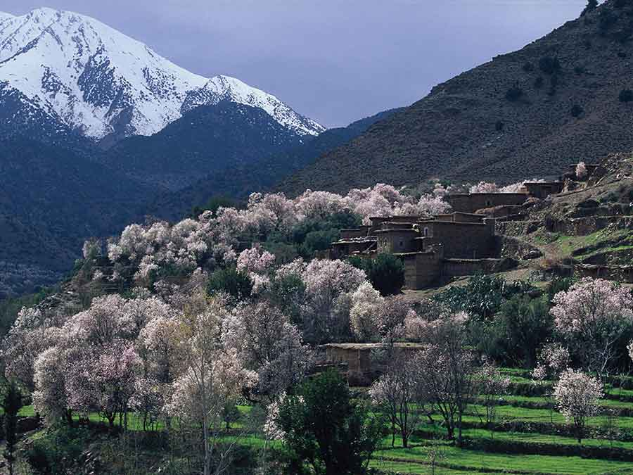 Ourika Valley private day tour from Marrakech