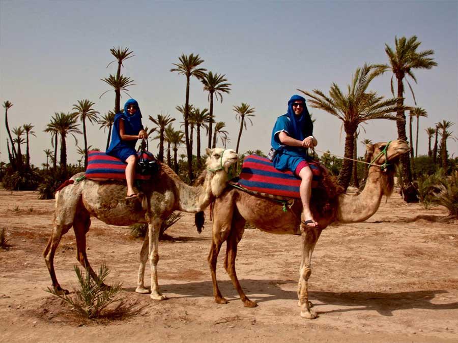 Private camel trek Marrakech