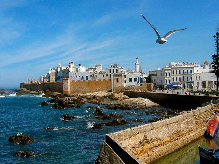 Private day trip to Essaouira